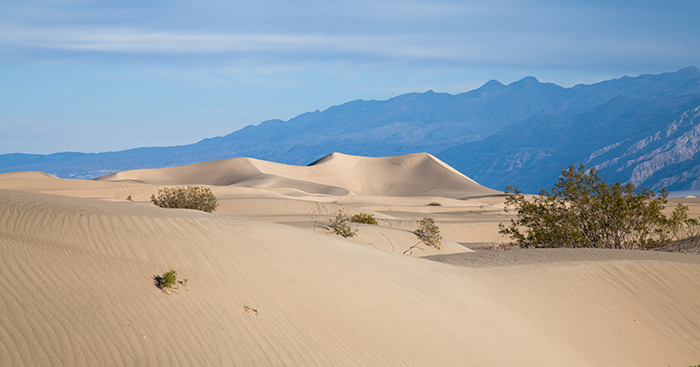 Death Valley, Photo: Mary L. Williams | What do heat waves have to do with the skin?