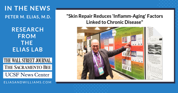 "Peter M. Elias, M.D. by his poster for his presentation: Systemic Effects of Inflammation in Aging Skin. This research was highlighted in the ""University of California San Francisco Newsletter,"" ""The Wall Street Journal"" and ""The Sacramento Bee."""